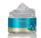 Mielle Organics Hawaiian Ginger Moisturizing Styling Gel - Heavenly Browns Beauty