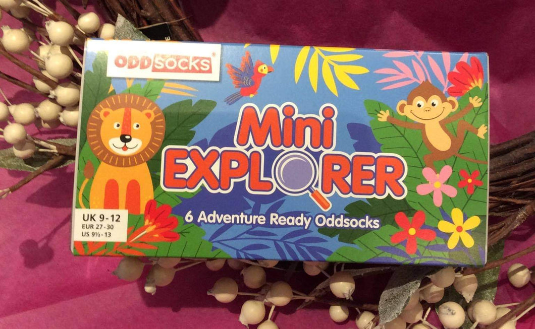 Mini Explorer 6 Odd Boxed Socks Girls Size 9-12 (Children)
