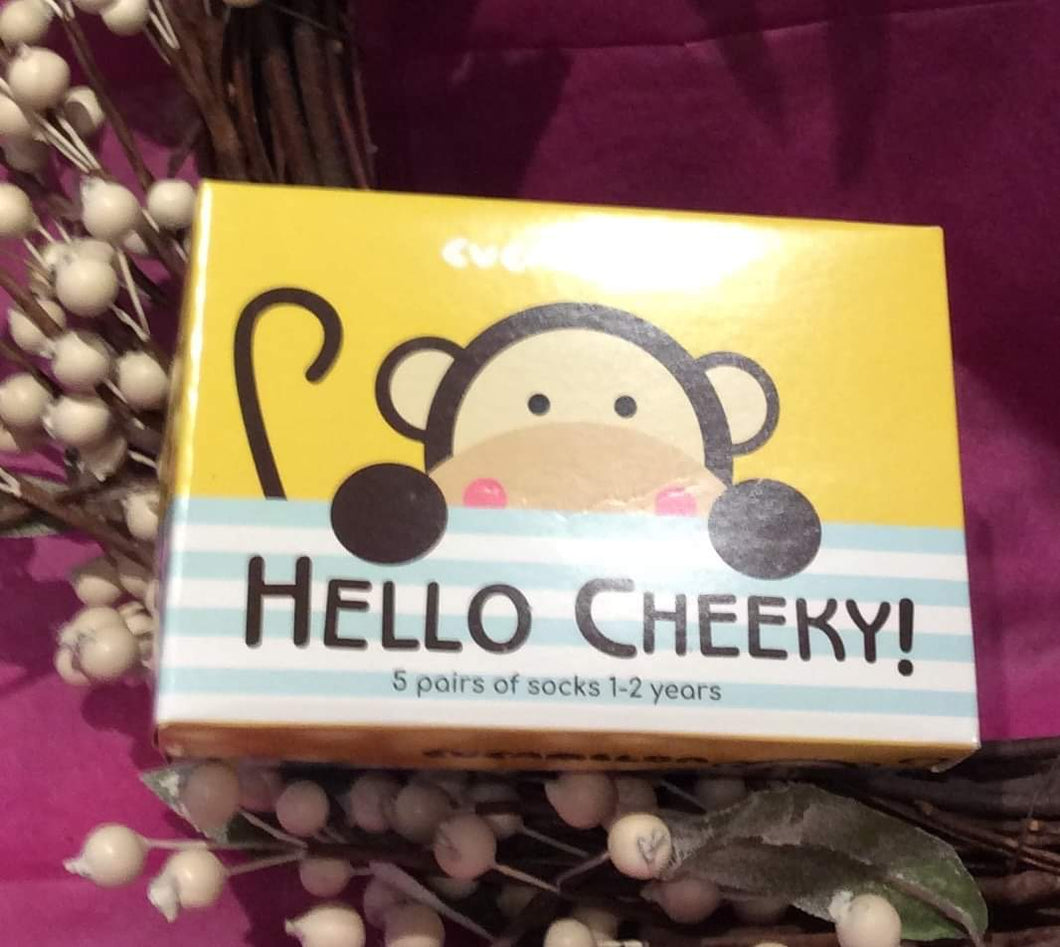 Hello Cheeky Children's Socks Ages 1-2