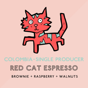The Artery - Colombian cat espresso ( large)