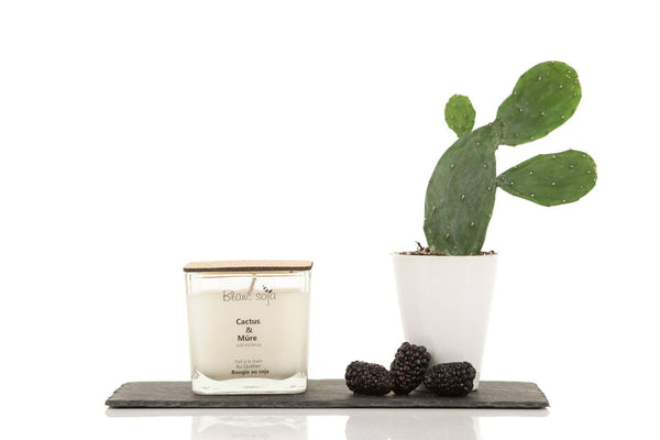 Soy Candle 420 ml - Cactus + Blackberry
