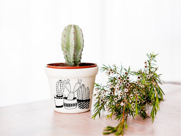 10 souvenir gifts Cactus planter - Sugar and Vice blog
