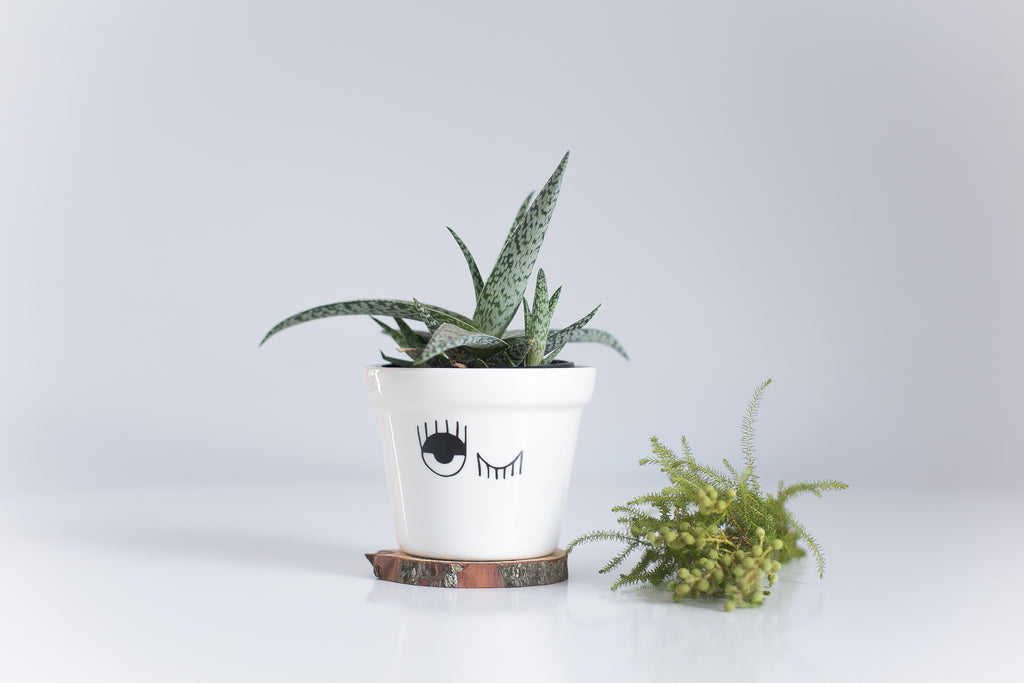 New Winking Planter for sale