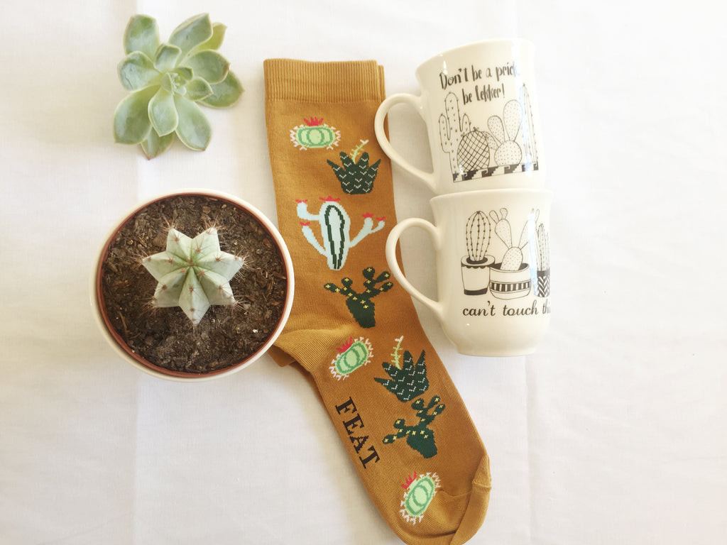 Cactus mugs and sock gift set