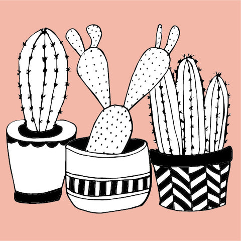 New Cactus design product collection - Sugar and Vice