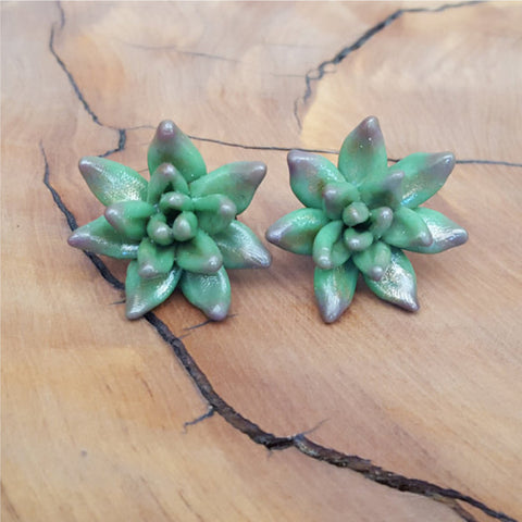 Succulent earrings - sugar and vice