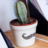 White Movember illustrated ceramic planter online - Cape Town - Sugar and Vice