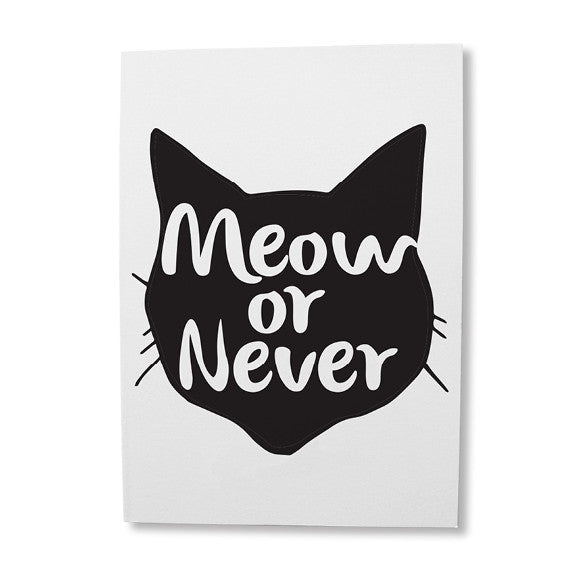 buy-greeting-cards-online-cat-lovers-occasion-cards-shop-online-south-africa2