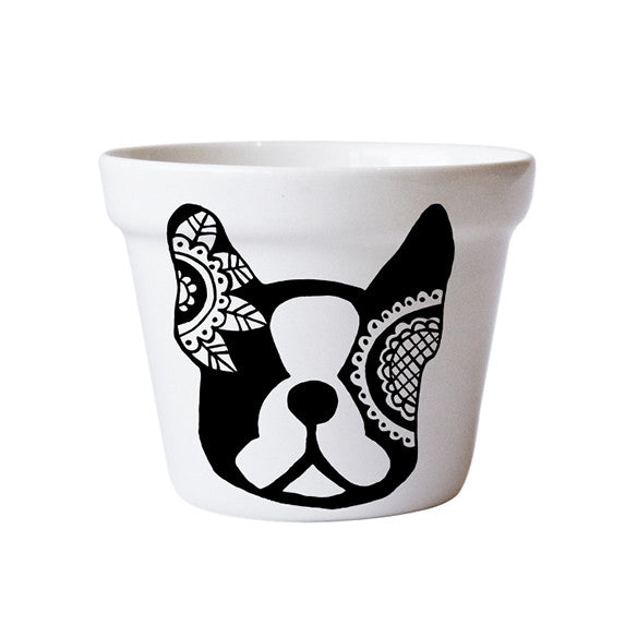 buy-plant-pots-ceramic-handmade-frenchie-french-bulldog-south-africa-cape-town-home-decor