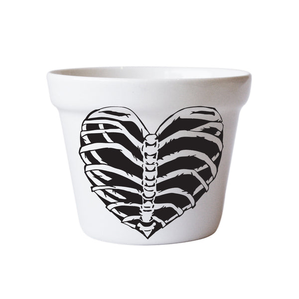 buy-garden-plant-pots-online-white-ceramic-plant-pots-shop-online-south-africa