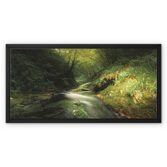 Play of Light - Lydford Gorge, Dartmoor Framed Canvas