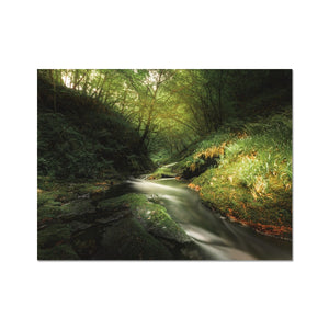 Play of Light - Lydford Gorge, Dartmoor Fine Art Print