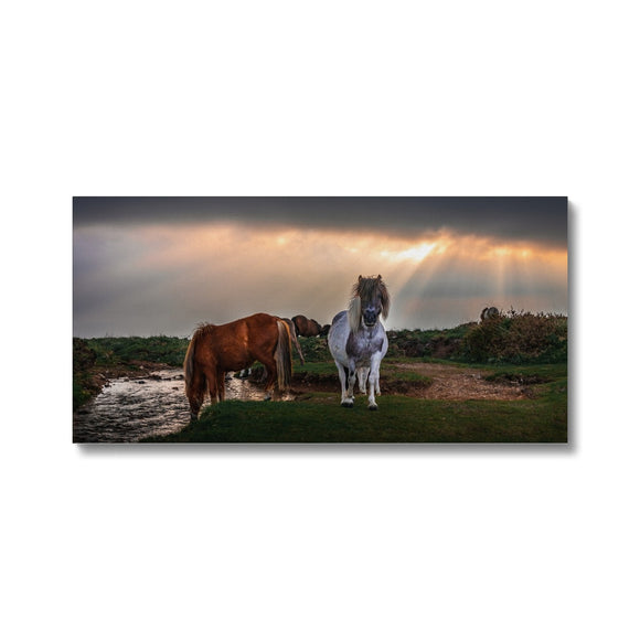 Glorious Nature - Windy Post, Dartmoor Canvas