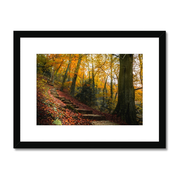 Ascend into Autumn! - Ilam Park, Peak District Framed & Mounted Print - Sydspicsprints