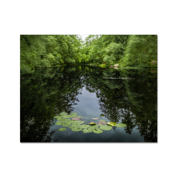 Lily Pads! - High Dam Tarn , Lake District Fine Art Print