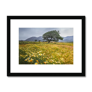 Odd one out! - Naxos, Greece Framed & Mounted Print - Sydspicsprints