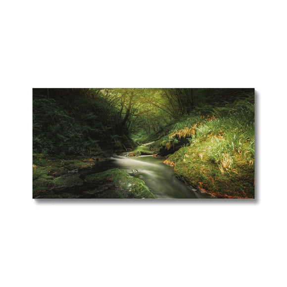 Play of Light - Lydford Gorge, Dartmoor Canvas
