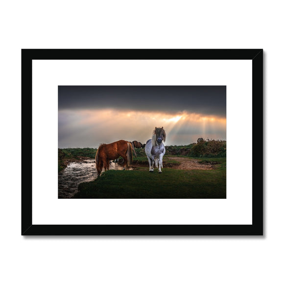 Glorious Nature - Windy Post, Dartmoor Framed & Mounted Print