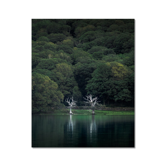 Twins! - Coniston Water , Lake District Fine Art Print