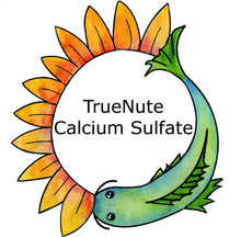 Load image into Gallery viewer, TrueNute Calcium Sulfate