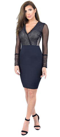 Emmi Black Lace Mesh Dress