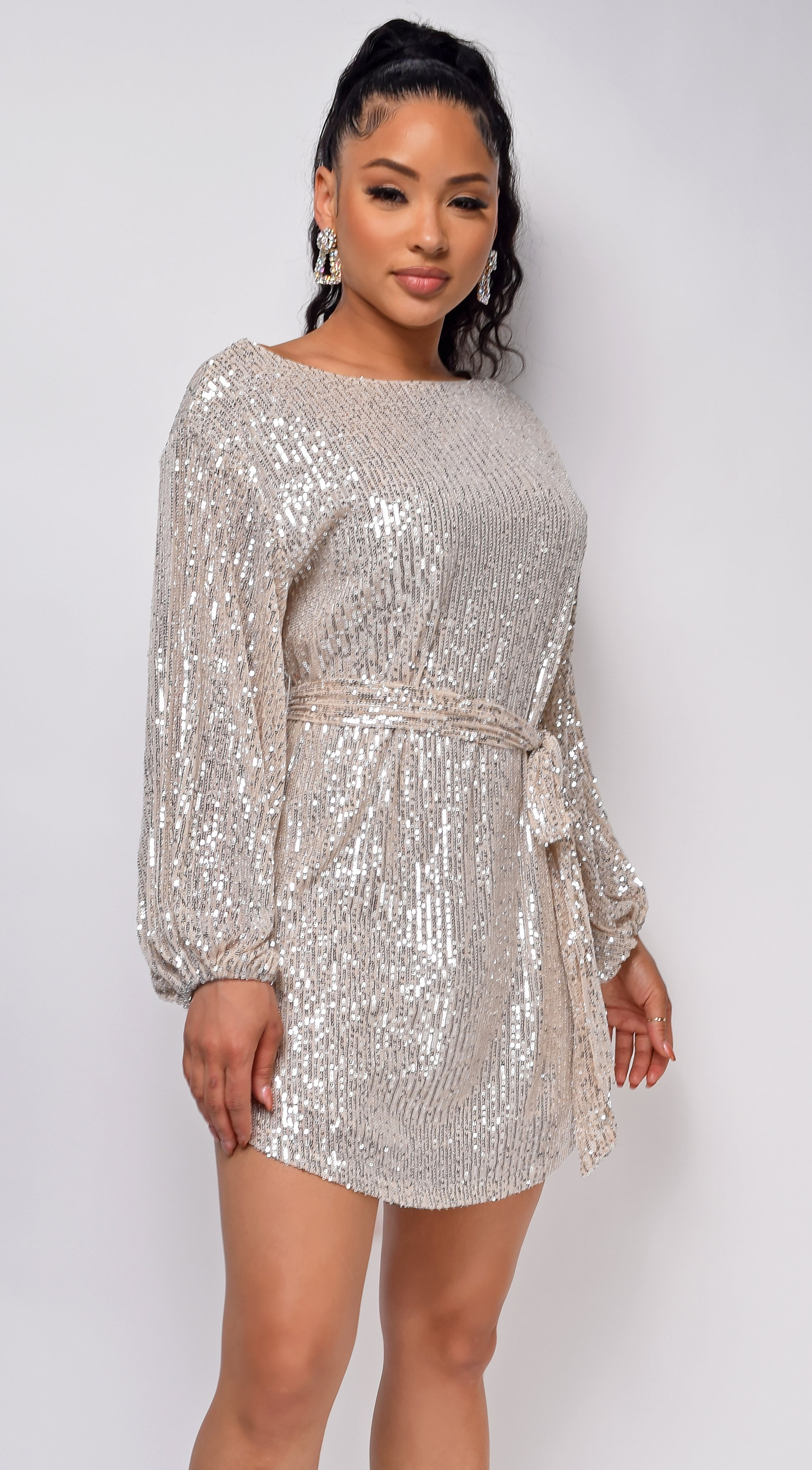 Tara Champagne Silver Belted Sequin Dress