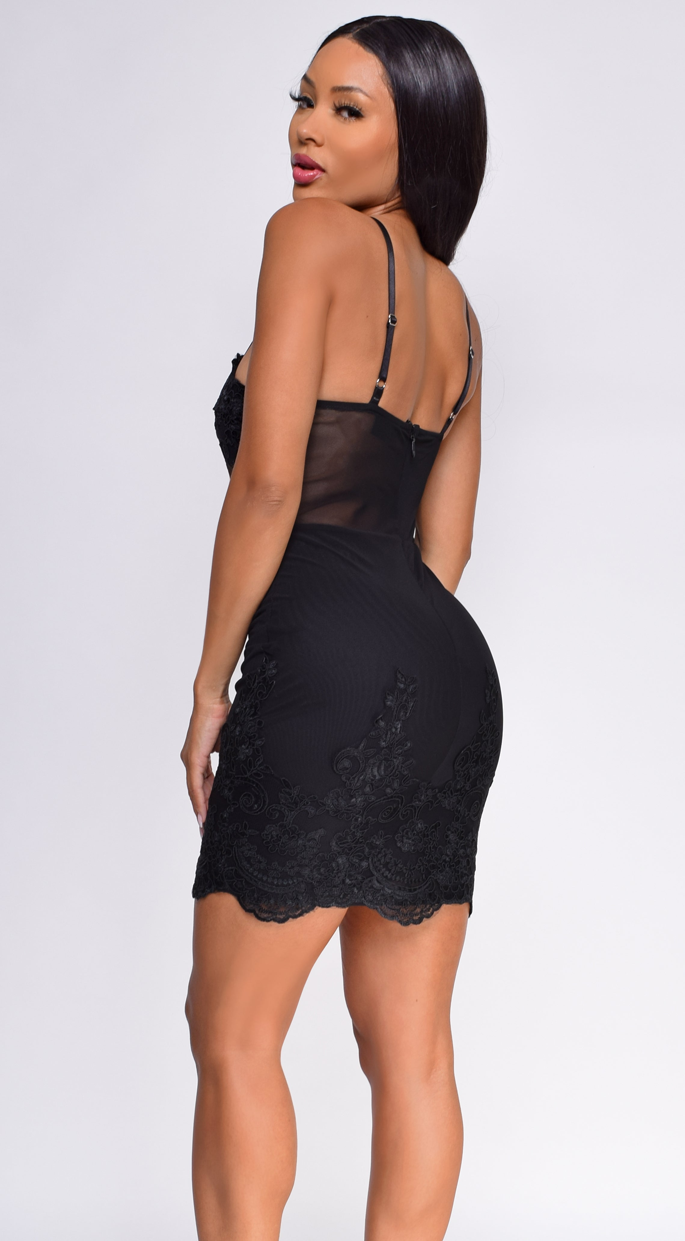 Leela Black Scalloped Embroidered Lace Mesh Dress