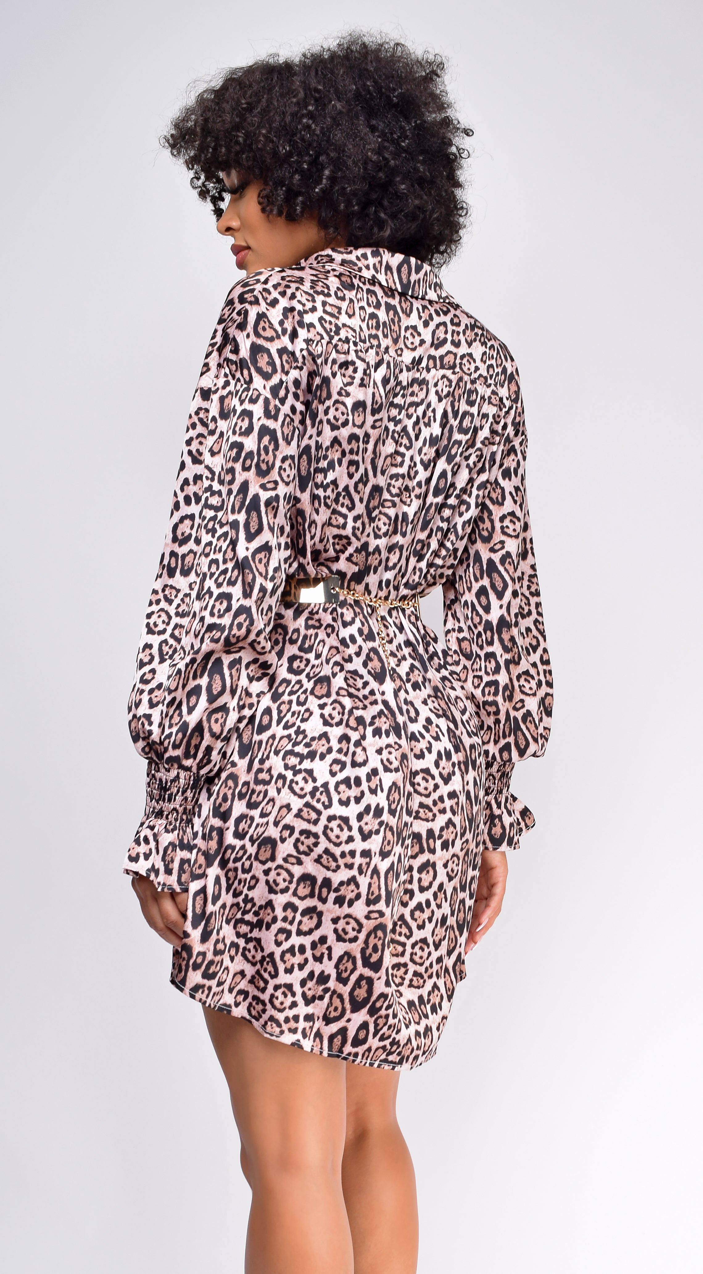 Into The Wild Brown Leopard Print Satin Dress