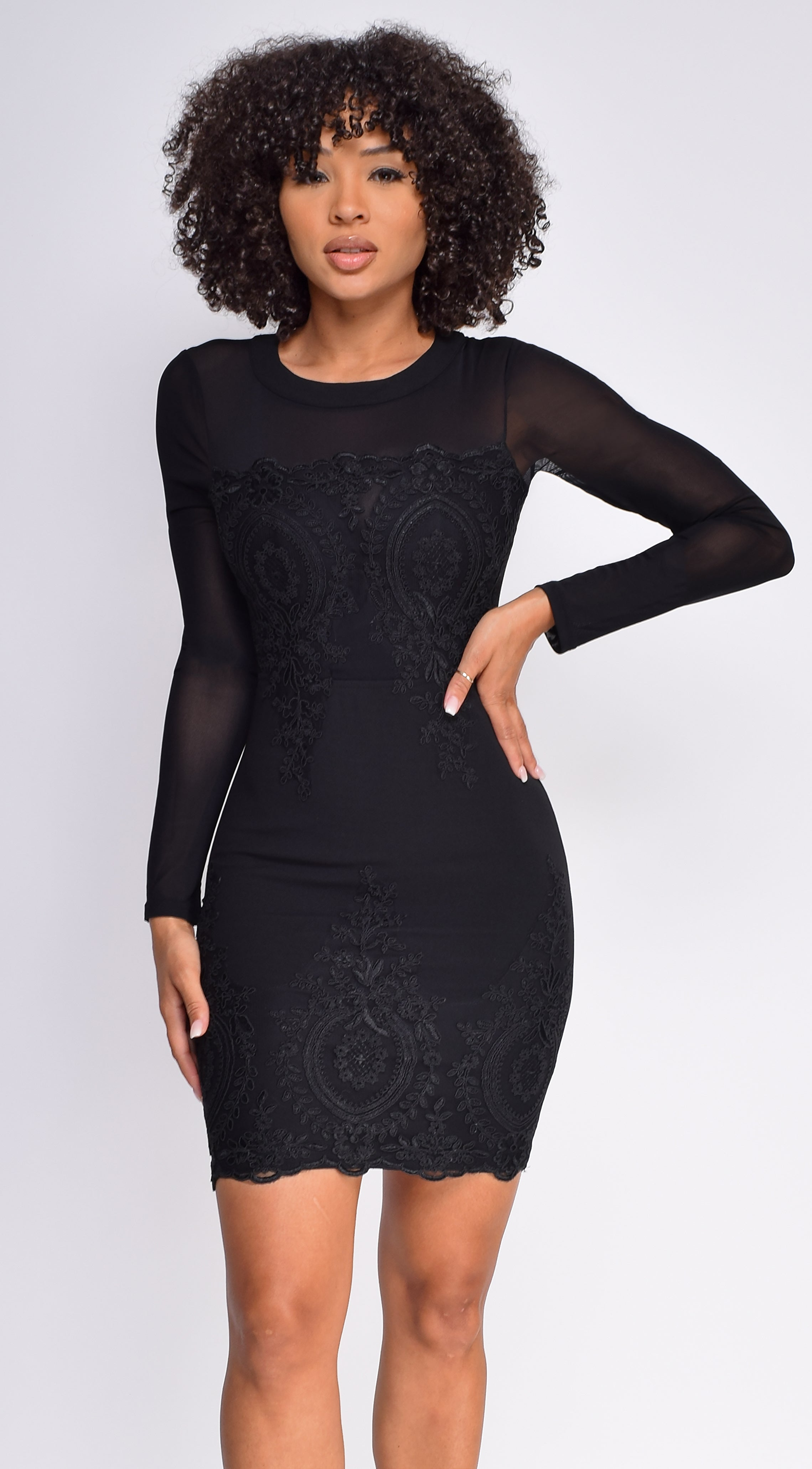 Halia Black Embroidered Lace Patch Applique Mesh Sleeves Dress