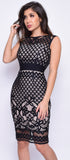 Leoni Black Nude Lace Bandage Dress