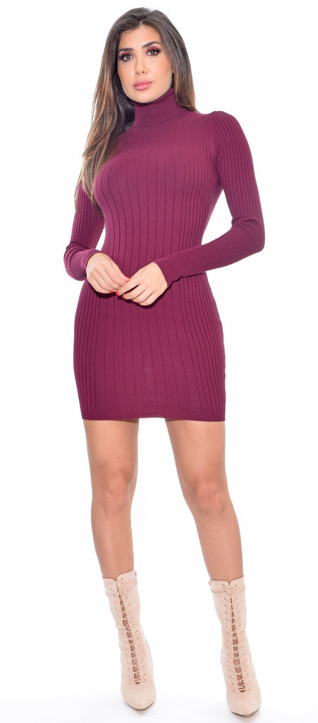 Toria Wine Mock Neck Long Sleeve Ribbed Dress