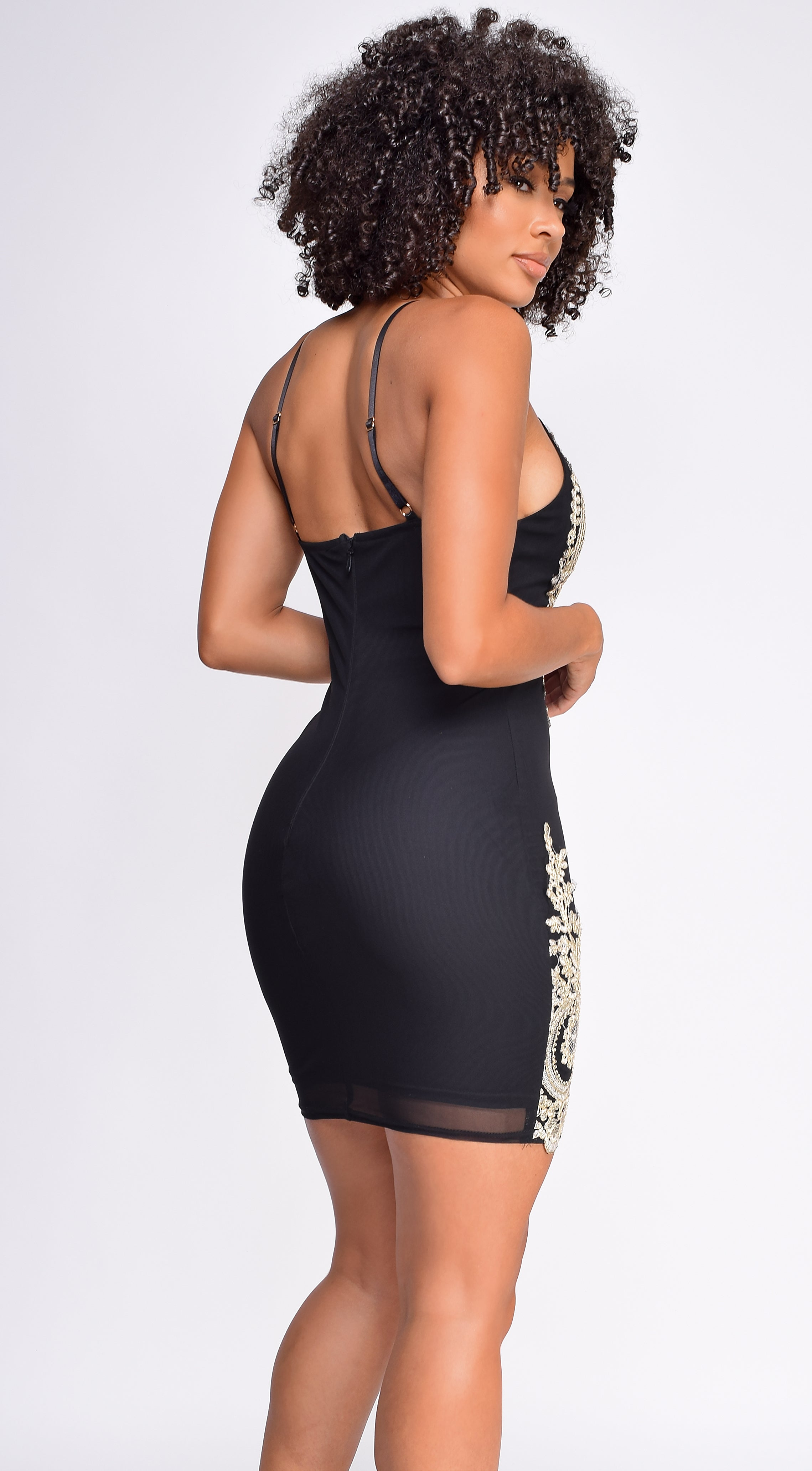 Cassia Black Gold Embroidered Mesh Dress