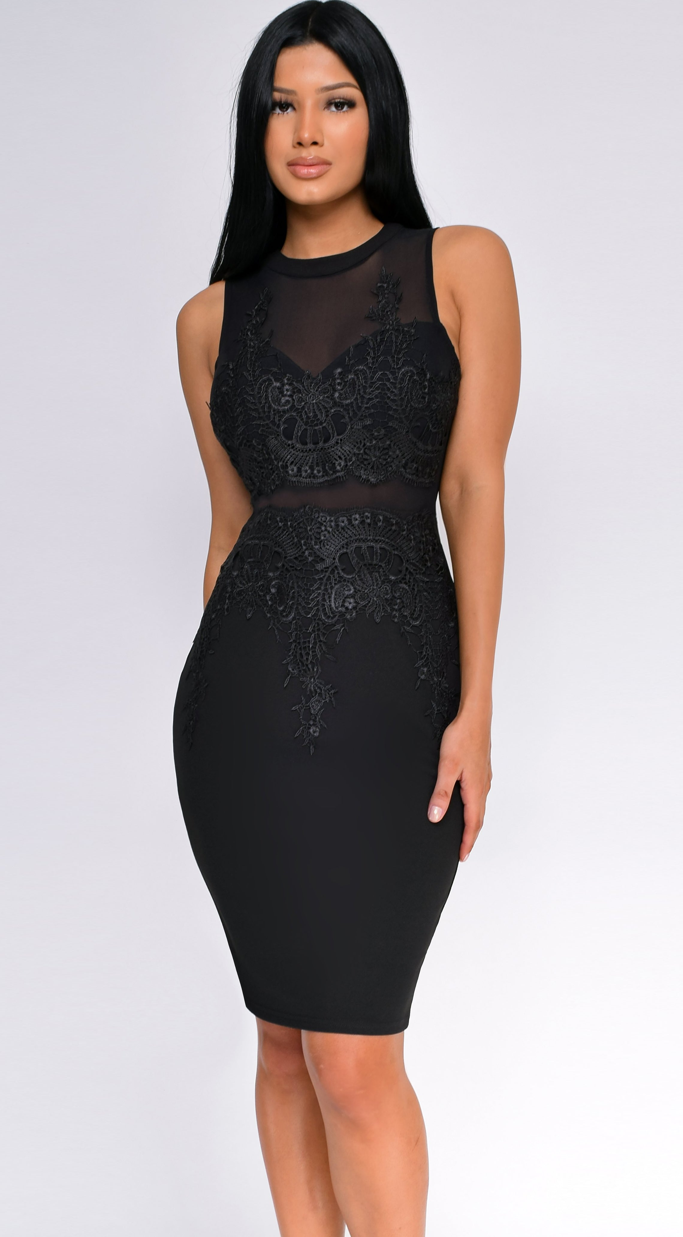 Mika Black Lace Applique Mesh Dress