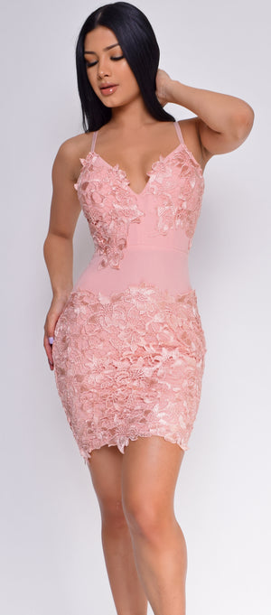 Alvera Blush Pink Floral Lace Applique Dress - Emprada