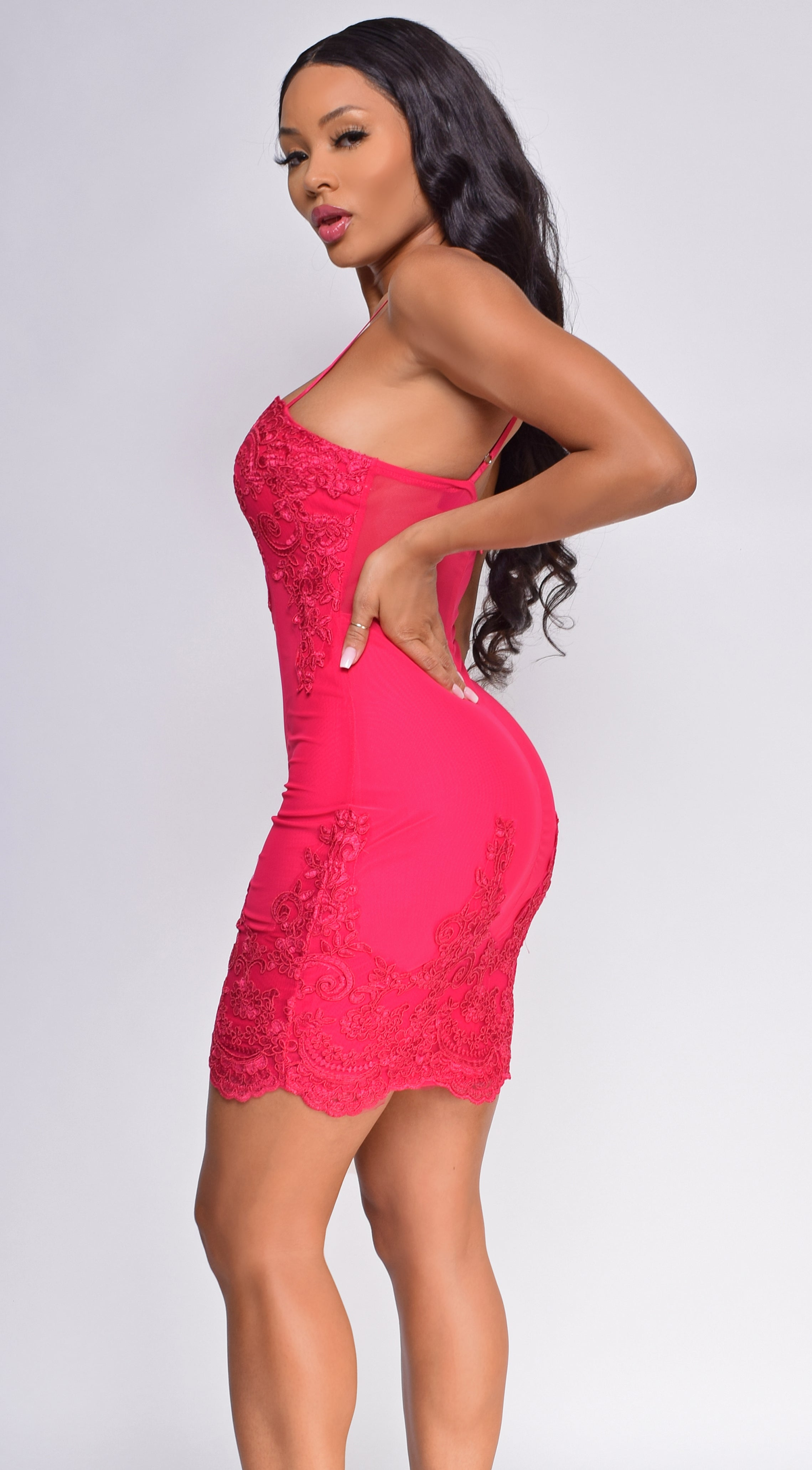 Leela Fuchsia Pink Scalloped Embroidered Lace Mesh Dress