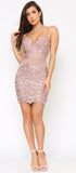 Alvera Mauve Pink Floral Lace Applique Dress - Emprada