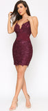 Alvera Plum Purple Floral Lace Applique Dress - Emprada