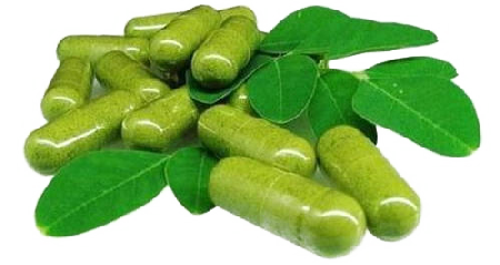 Moringa Pills and Leaves