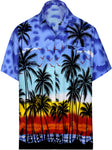 Hawaiian Shirt Mens Beach Aloha Camp Party Holiday Short Sleeve