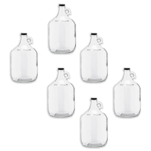 C-Store - 1 Gall Clear Glass Growler, glass jug