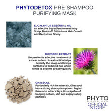 Load image into Gallery viewer, PHYTO DETOX Pre-Shampoo Purifying Mask 125ml