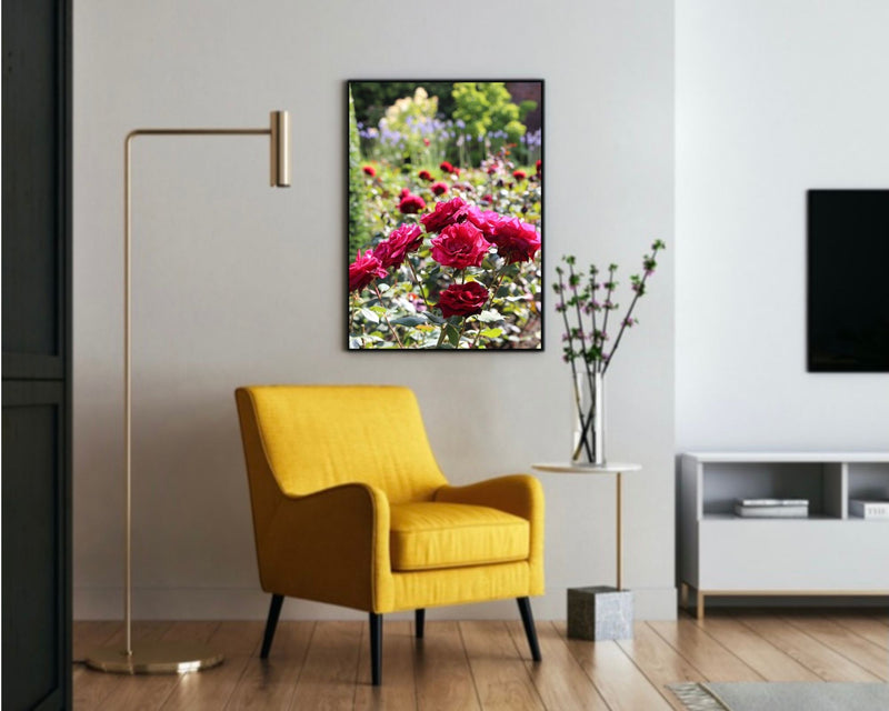 roses flowers poster