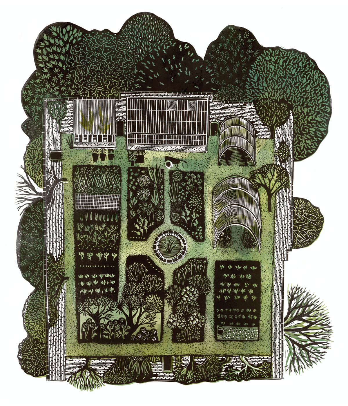 Kitchen Gardens, Launde, a linocut print by Sarah Kirby