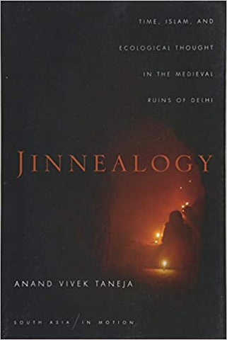 Jinnealogy: Time, Islam, and Ecological Thought in the Medieval Ruins of Delhi by Anand Vivek Taneja