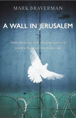 A Wall in Jerusalem: Hope, Healing, and the Struggle for Justice in Israel and Palestine by Mark Braverman