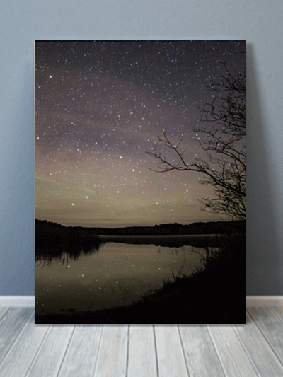 Cape Cod Milky Way Forest World Travel Art