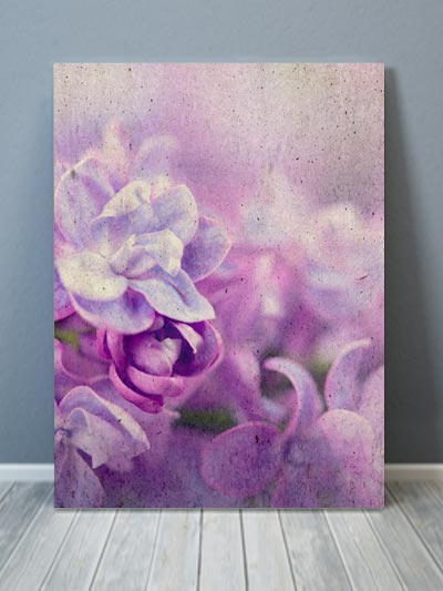 Grunge Sweet Lilac Canvas Art