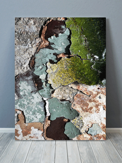 Green Chipped Paint Texture Canvas Art