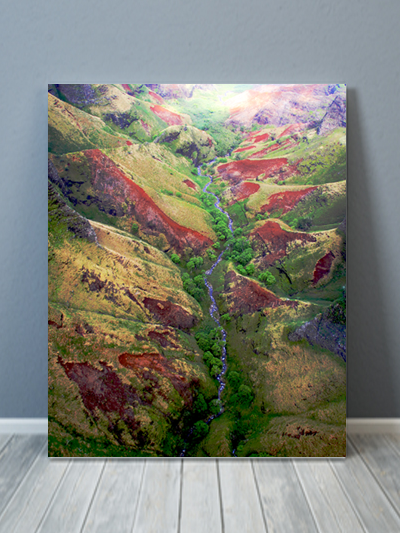 Kauai Mountain Scape Canvas Art