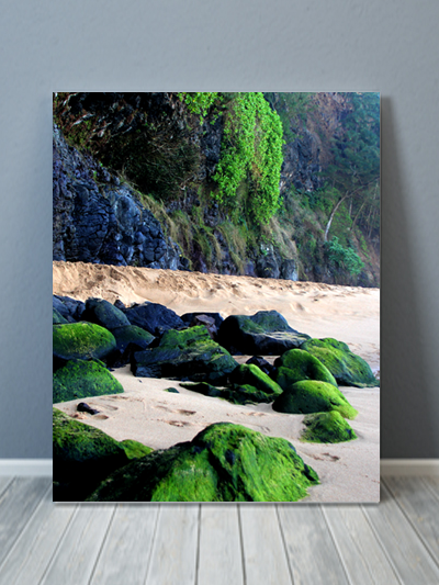 Kauai Remote Beach Canvas Art